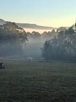 back2earth-mist-paddock