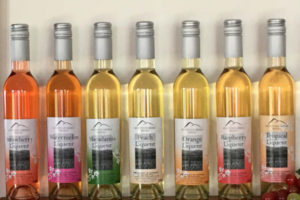 Winery Tours for Women | Berry South Coast NSW