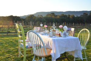 High Tea in the Vineyard | Tours for Women South Coast NSW