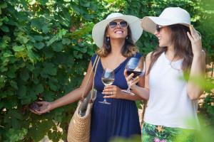 winery-tours-south-coast-nsw