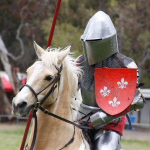 Berry Celtic Festival | Knights